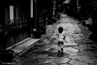 「雨あがり」のりたけ(島根県)